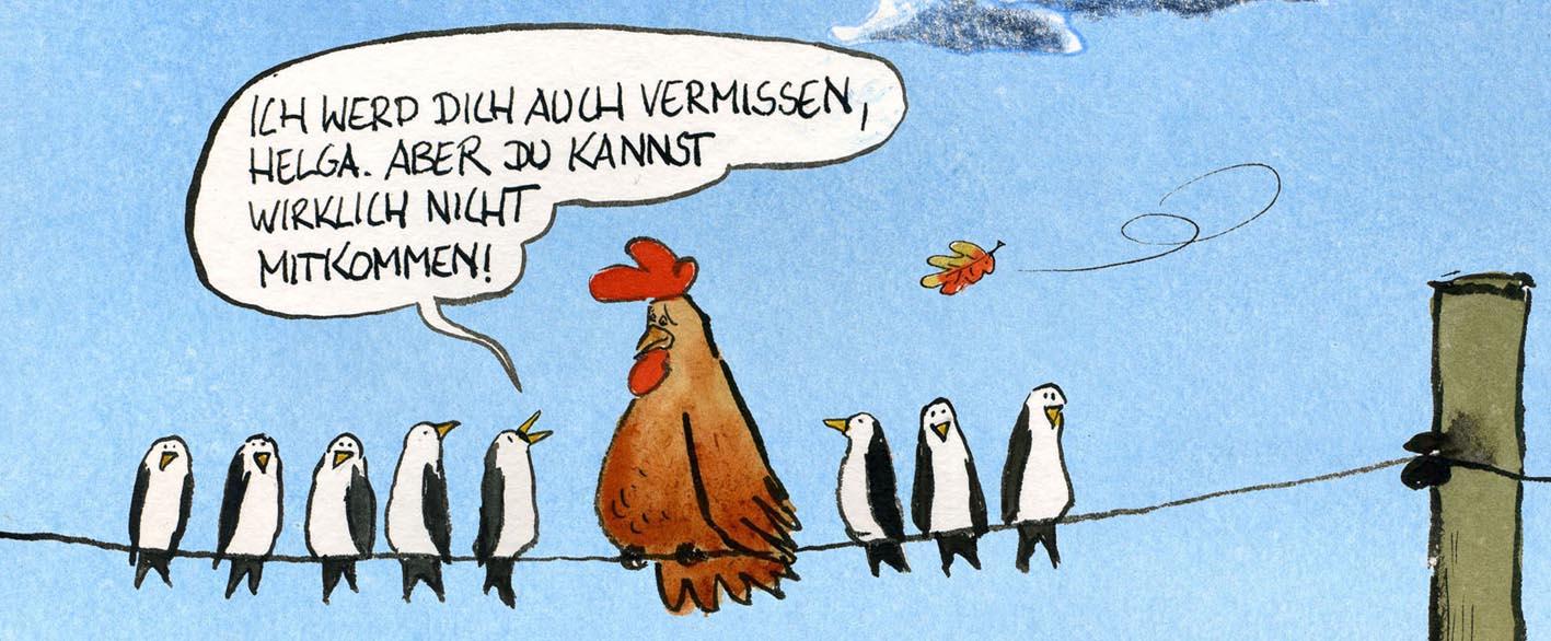 Cartoon 'Tillmanns Tierleben' von Rüdiger Tillmann bei der Rätselschmiede